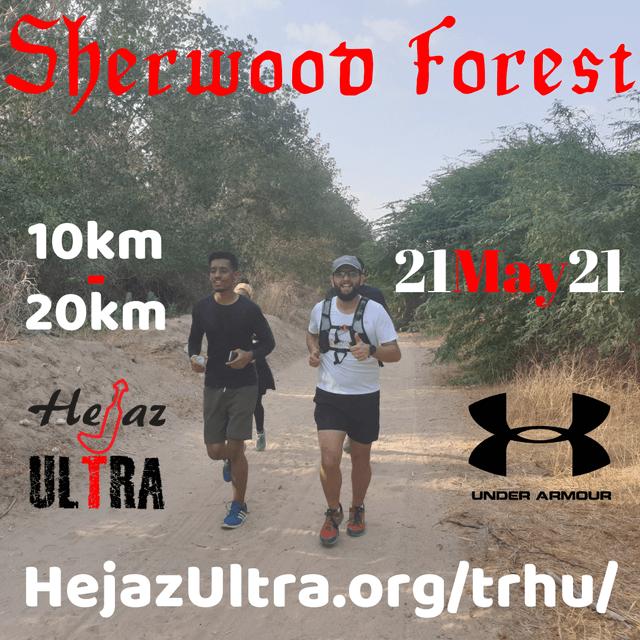 Sherwood Forest 20210521